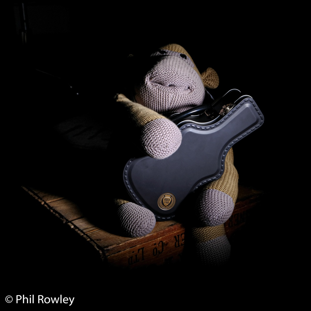 Toy monkey with guitar case